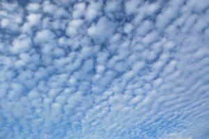 巻積雲 ウロコ雲
