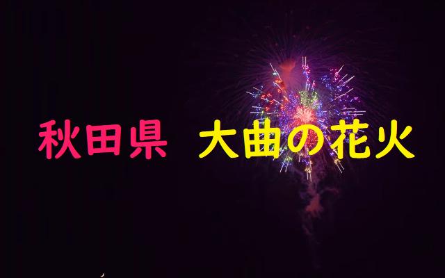 秋田県大曲の花火競技大会