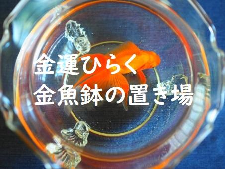 金魚鉢を置く場所金運