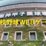 俺の甲子園高校野球