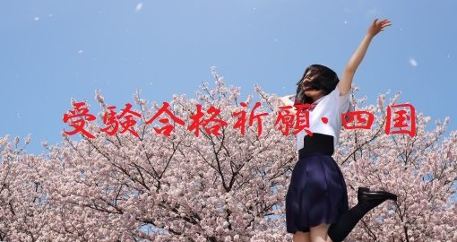 受験合格神社四国