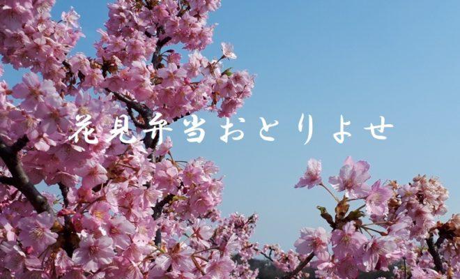 河津桜弁当お取り寄せ